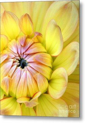 Yellow Macro Flower Metal Print by Ramneek Narang