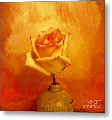 Metal Print featuring the photograph Yellow Red Orange Tipped Rose by Marsha Heiken
