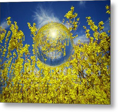 Metal Print featuring the photograph Yellow by Robert Geary