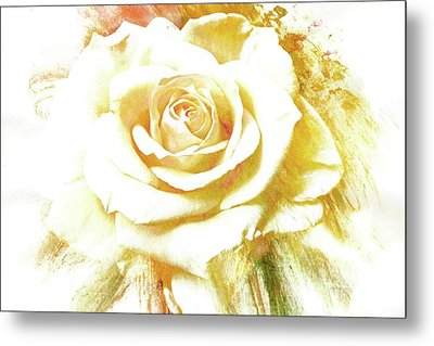 Metal Print featuring the photograph yellow Rose by Athala Carole Bruckner