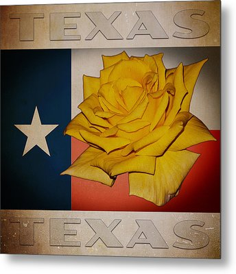 Yellow Rose On Texas Metal Print by William Havle