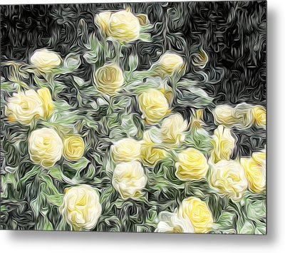 Yellow Roses Metal Print by Carol Crisafi