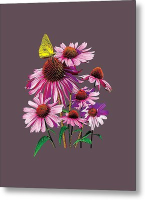 Yellow Sulphur Butterfly On Coneflower Metal Print