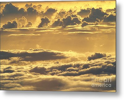 Yellow Sunset Metal Print by Carl Shaneff - Printscapes