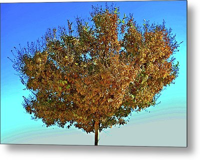 Yellow Tree Blue Sky Metal Print