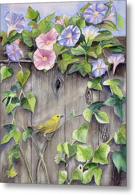 Yellow Warbler And Morning Glory Metal Print by Patricia Pushaw