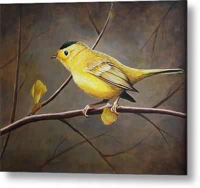 Yellow Warbler Metal Print by Pam Kaur