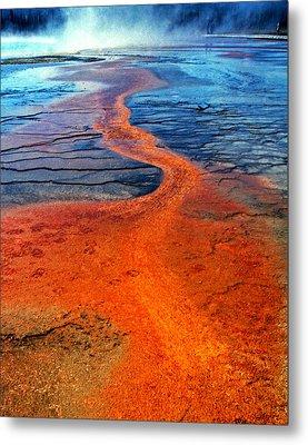 Yellowstone 1 Metal Print by David Gilbert