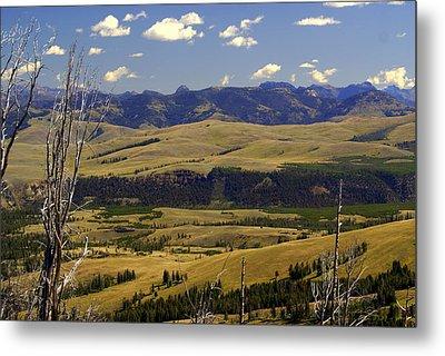 Yellowstone Landscape 2 Metal Print by Marty Koch