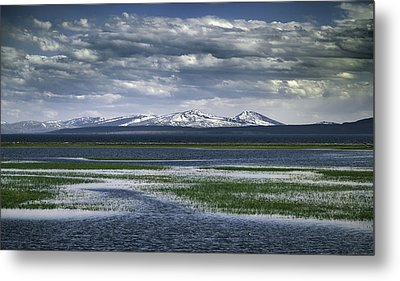 Yellowstone Mountain Scape Metal Print by Jason Moynihan