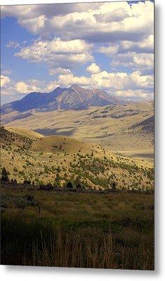 Yellowstone View Metal Print by Marty Koch