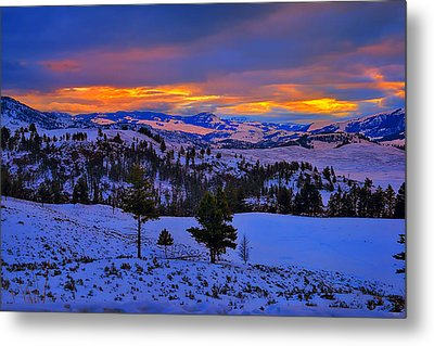 Yellowstone Winter Morning Metal Print by Greg Norrell