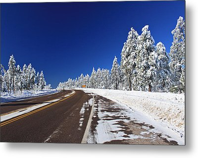 Metal Print featuring the photograph Yes Its Arizona by Gary Kaylor