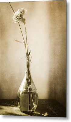 Yesterday Metal Print by Lisa McStamp