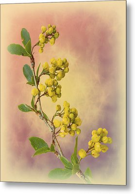 Yesteryear Metal Print by Christina Lihani