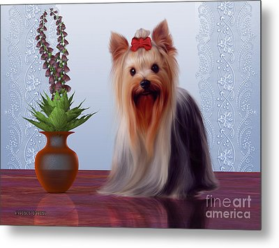Yorkshire Terrier Metal Print by Corey Ford