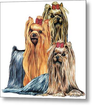 Yorkshire Terriers Metal Print by Kathleen Sepulveda