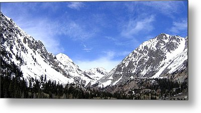 Yosemite Park Metal Print by Will Borden