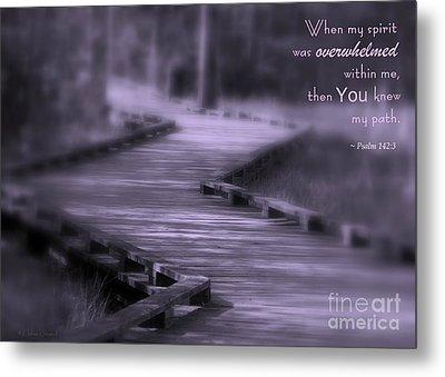 You Knew My Path Metal Print by Debra Straub