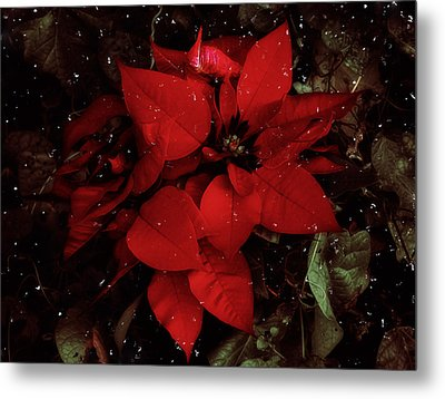 You Know It's Christmas Time When... Metal Print