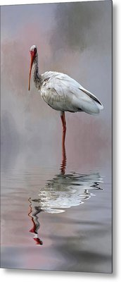 You Lookin' At Me? Metal Print by Cyndy Doty