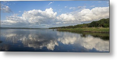 You Might Know Metal Print by Jon Glaser