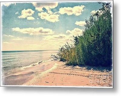 You Walked Away - Wisconsin Metal Print by Mary Machare