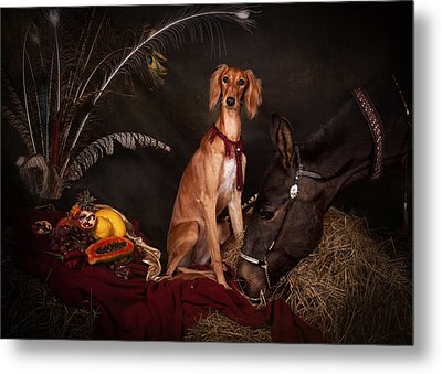 Young Saluki Dog With A Horse Metal Print
