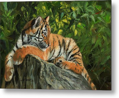 Metal Print featuring the painting Young Tiger Resting On Rock by David Stribbling