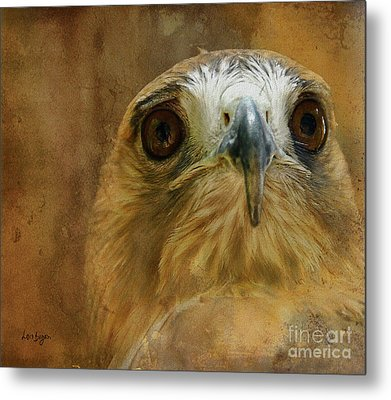 Your Majesty Metal Print by Lois Bryan