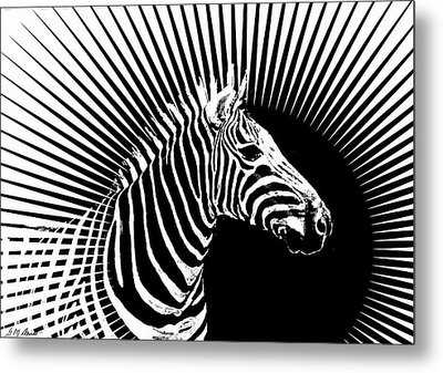 Zebra Dawn Metal Print by Michael Durst