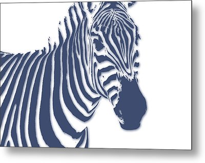 Zebra Metal Print by Joe Hamilton