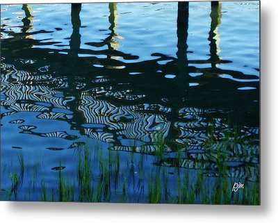 Metal Print featuring the photograph Zebra Reflections by Phil Mancuso