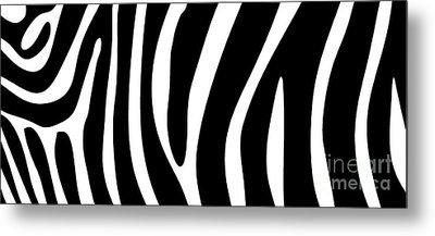 Zebra Skin Mug Metal Print by Edward Fielding