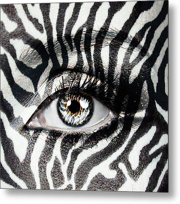 Zebra  Metal Print by Yosi Cupano