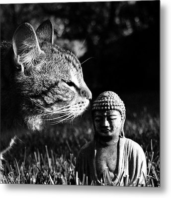 Zen Cat Black And White- Photography By Linda Woods Metal Print by Linda Woods