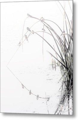 Zen Streamside Metal Print