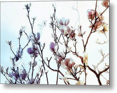 Zen Thoughts Metal Print by Elaine Manley