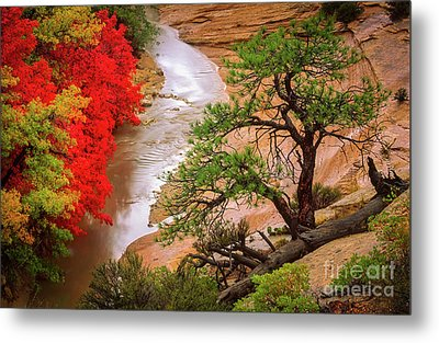Zion After The Flood Metal Print