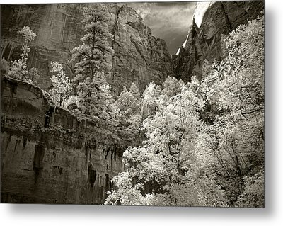 Zion Metal Print by Mike Irwin