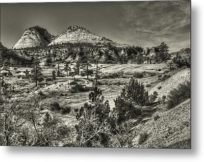 Zion National Park Along Rt 9 Metal Print