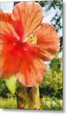 Zoo Flower Metal Print by Jeffrey Kolker