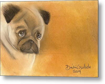 Zooey The Pug Metal Print by Dindin Coscolluela