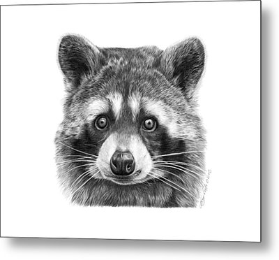Metal Print featuring the drawing 046 Zorro The Raccoon by Abbey Noelle