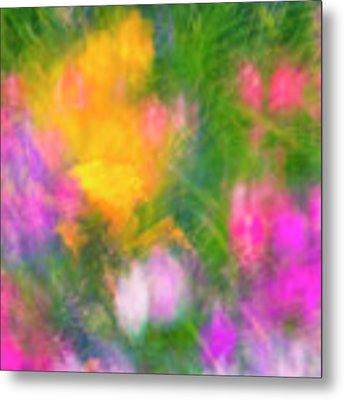 Summer Impression Series Panorama - Flowers Metal Print by Ranjay Mitra