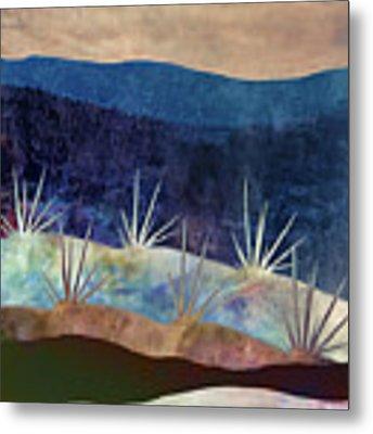 Baja Landscape Number 2 Metal Print by Carol Leigh