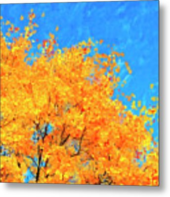 The Power Of Color Metal Print by Mark Tisdale