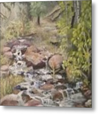 Brook Metal Print by Saundra Johnson