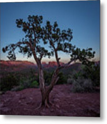 Cathedral Rock Metal Print by Gary Lengyel