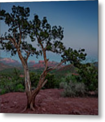 Cathedral Rock Overview Metal Print by Gary Lengyel